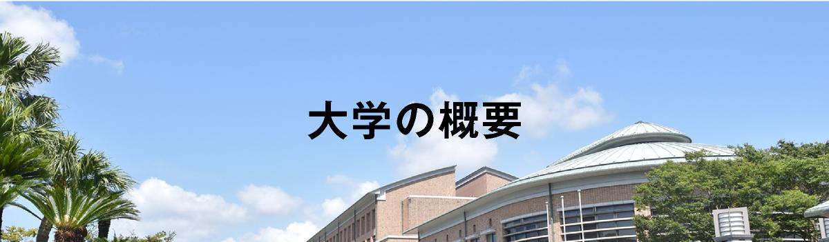 大学の概要